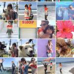 index_photos_posterframe_2x