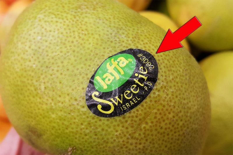 fructe-cod-plu-1