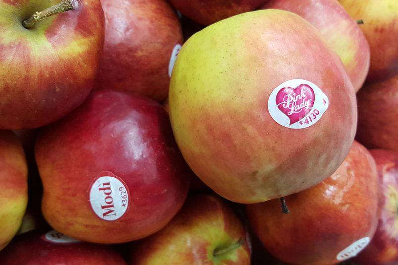 fructe-cod-plu-3