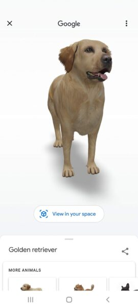 google search animale 3d